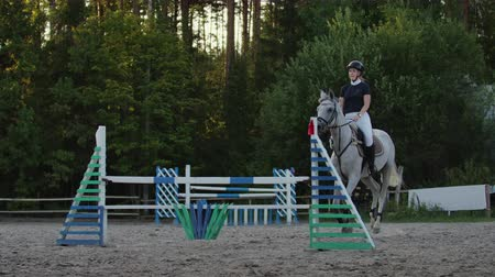 pace : Young female rider on bay horse jumping over hurdle on equestrian sport competition.