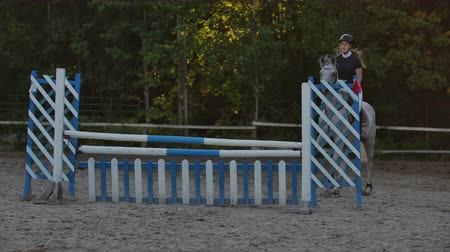 herélt ló : Young female rider on bay horse jumping over hurdle on equestrian sport competition.