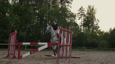 kobyla : Young woman jumps horse over an obstacle during her training in an arena. Young woman jumps horse over an obstacle during an event in an arena. Sport. Aims.