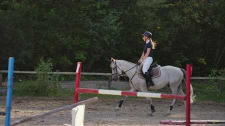 kobyla : Professional girl rider galloping on a horse. Girl riding a horse on an arena at sunset. Horse hoof creates a lot of dust. Competitive rider training jumping