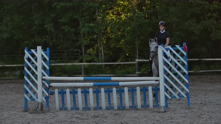 tête de cheval : SLOW MOTION, CLOSE UP: Young horsegirl horseback riding strong brown horse jumping the fence in sunny outdoors sandy parkour riding arena. Competitive rider training jumping over obstacles at sunset. Vidéos Libres De Droits