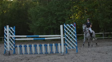 kobyla : SLOW MOTION, CLOSE UP, LOW ANGLE: Horsegirl riding strong brown horse jumping the fence in sunny outdoors sandy parkour dressage arena. Competitive rider training jumping over obstacles in manege.