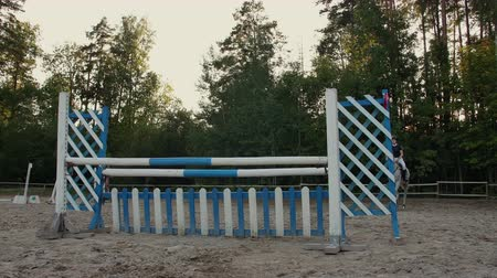 tête de cheval : Young woman on horse jumping over obstacles. Slow motion. Training horses before the competition. Horse Racing. Horse breeding. Farm. Horseman. Rider, equestrian, jockey.