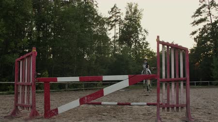 kötött : SLOW MOTION, CLOSE UP: Young horsegirl horseback riding strong brown horse jumping the fence in sunny outdoors sandy parkour riding arena. Competitive rider training jumping over obstacles at sunset. Stock mozgókép