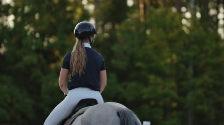 herélt ló : Back view of rider on a horse. Back view of a rider with a horse slow motion 120 fps