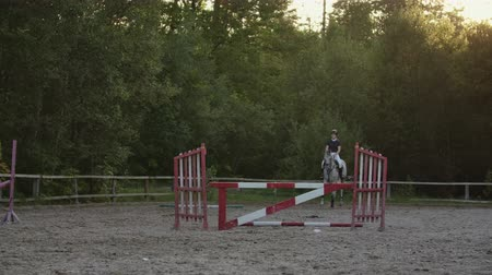 fegyelem : Young woman jumps horse over an obstacle during her training in an arena. Young woman jumps horse over an obstacle during an event in an arena. Sport. Aims.