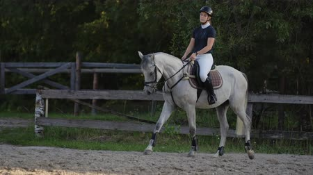 pace : Professional girl rider galloping on a horse. Girl riding a horse on an arena at sunset. Horse hoof creates a lot of dust. Competitive rider training jumping