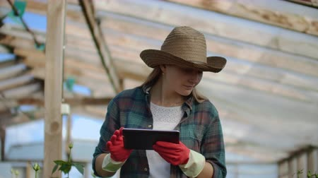 calcular : Beautiful woman florist walks through the greenhouse with a tablet computer checks the grown roses, keeps track of the harvest and check flower for business clients.