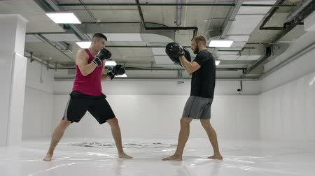 каратэ : By fighting a mma with a trainer, he works out the striking technique of arms and legs, training the reaction of dives and deviations from strikes. Workout with a partner on the paws of blows Стоковые видеозаписи