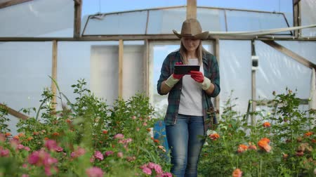 csöves virág : Woman gardener in a hat looking for flowers. A modern Florist uses a tablet computer to analyze the yield of flowers.