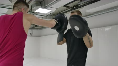 킥복싱 : Power blow to boxing paw. Strong tattooed athlete in sports clothing training on boxing paws with partner 무비클립