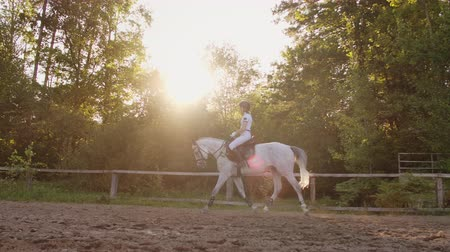 salto ostacoli : side view: Professional equitation from horsewomen
