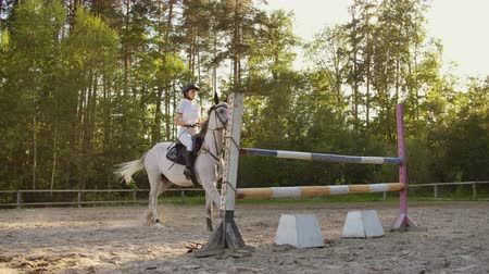 dizgin : Show jumping from professional horsewomen Stok Video