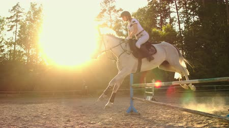 podkowa : Show jumping from horsewomen. Slow motion