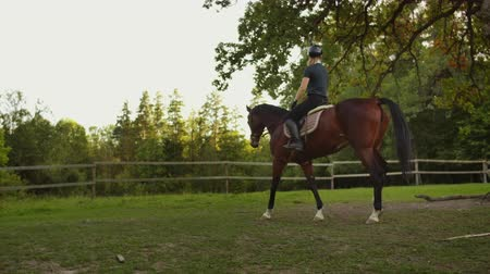 at nalı : Equitation in nature slow motion