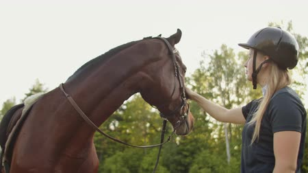 salto ostacoli : Love and tenderness with a horse