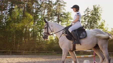 staffa : The best horse riding moments with a favorite horse Filmati Stock