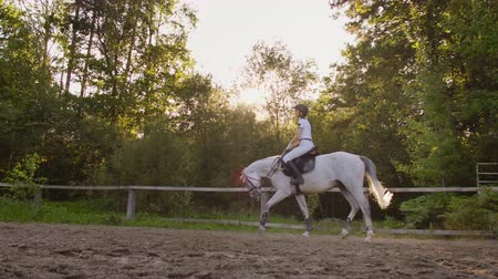 верхом : Professional a horseback riding from horsewomen