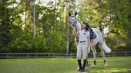 salto ostacoli : Care and love from horsewomen to her horse in nature Filmati Stock