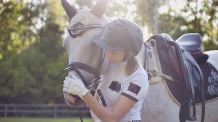 fer a cheval : Love and care from horsewomen to her horse friend