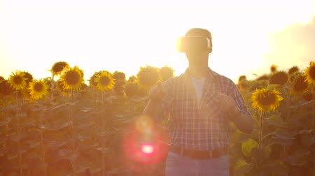 sunflower : VR glasses in nature Slow motion Stock Footage