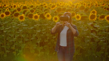 artificial flower : Female modern farmer in a field with sunflowers uses VR technology. Simulating the applications user interface. Control the irrigation system with drones. Inspect the field using drones