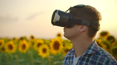 artificial flower : The man in VR glasses on the sunflowers field