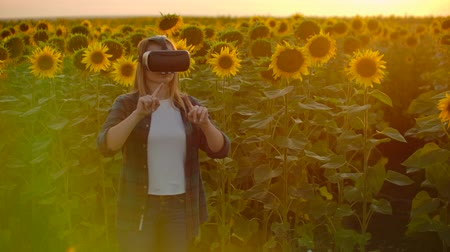 artificial flower : The woman is working in VR glasses in nature at sunset