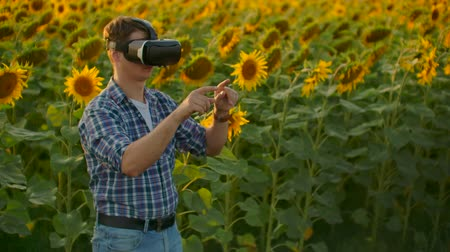 field study : The young boy is working in VR glasses Stock Footage