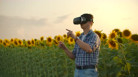 strohhut : VR glasses for modeling sunflowers field