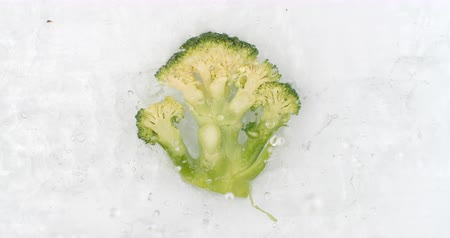 brocoli : In slow motion, water splashes pour water onto one broccoli on a white background. Vegetarian and Fructorians