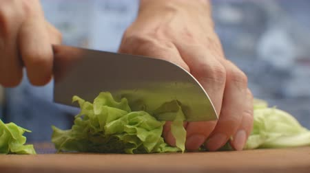 shred : Cut lettuce leaves on a wooden board closeup. shred