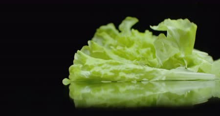 espargos : In slow motion, leaves of fresh green lettuce fall with splashes of water.