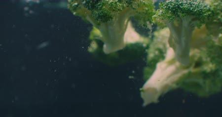 karnabahar : Green fresh broccoli washed in clear water before cooking, slow motion. Stok Video