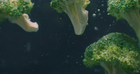 karnabahar : broccoli Underwater with air bubbles and in slow motion. Fresh and juicy healthy vegetarian.
