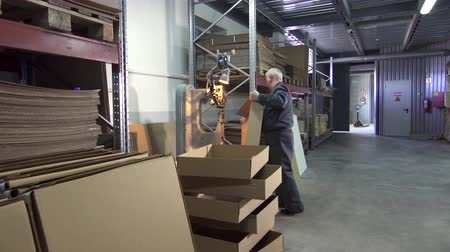 compartimento : Male worker makes boxes in the factory Stock Footage