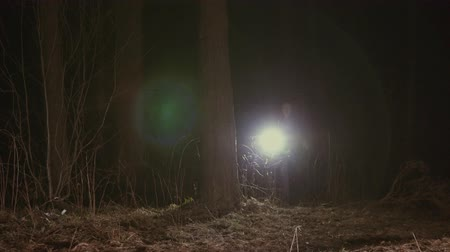 kidnapping : girl runs through a dark forest with a lantern
