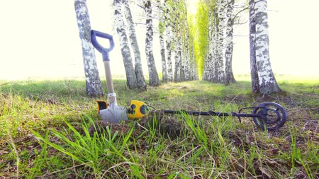cenný : metal detector and shovel in the forest,Nobody