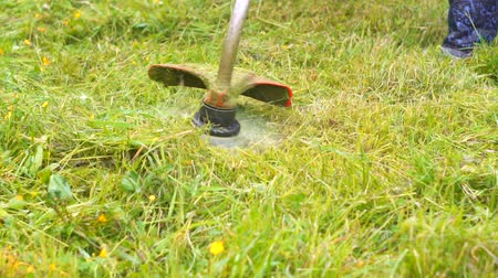 çimenli : person uses a trimmer when mowing grass at home Stok Video