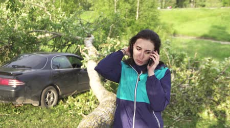 aftermath : the tree after the hurricane fell on the car, the girl calls the rescuers