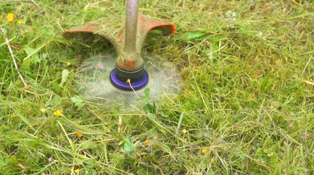 front or back yard : work trimmer mowing grass close-up