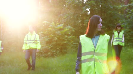 dead forest : the work of volunteers in green vests, the search for the missing in the woods, at sunset