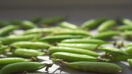 pea pods : Pods of fresh green peas on the table.Slow mo