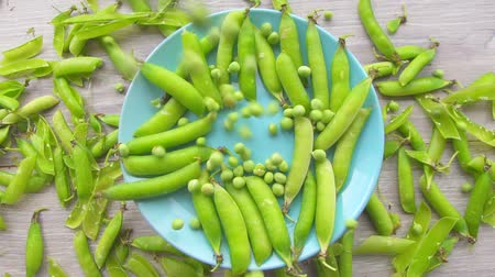 pea pods : Pile of fresh green peas falling on the pods of green peas from under the camera.Slow mo