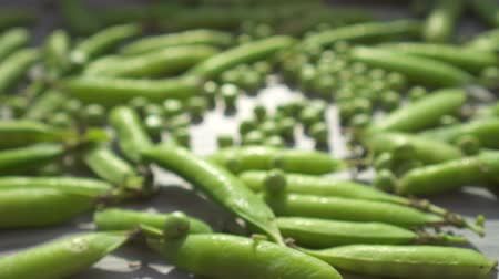 pea pods : Fresh green peas and pods in close-up on the table.