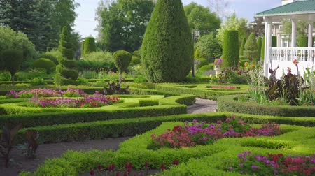 boxwood : view of green English garden without people, with home