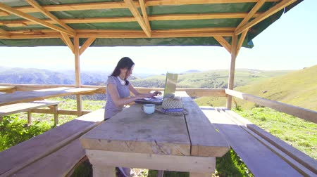 столовая гора : Girl freelancer working remotely on a laptop in the mountains