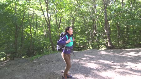 takip etmek : Girl tourist with a backpack up the trail in the woods,sun ray