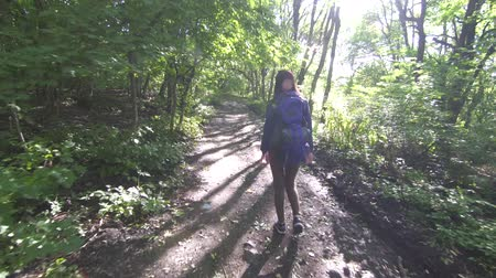рекреационных преследования : Young tourist girl with backpack on her back walking through the forest rear view,sun ray