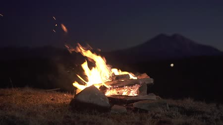 yangın : Lit a fire at night in the mountains,slow mo Stok Video